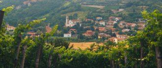 Euganean hills of Abano Terme